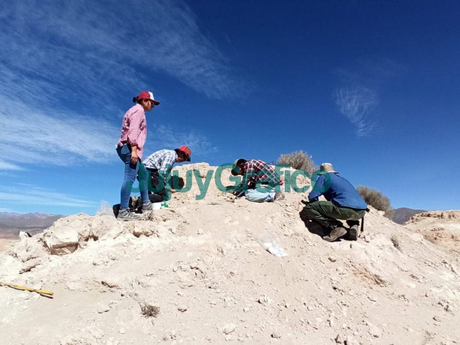 Extraccion exitosa de restos fosiles en Humahuaca 2