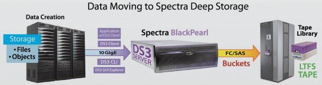 spec-1