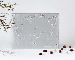 Summerbird julekalender, økologisk chokolade julekalender, julekalender med økologisk chokolade, chokolade julekalender til voksne, summerbird julekalender 2020