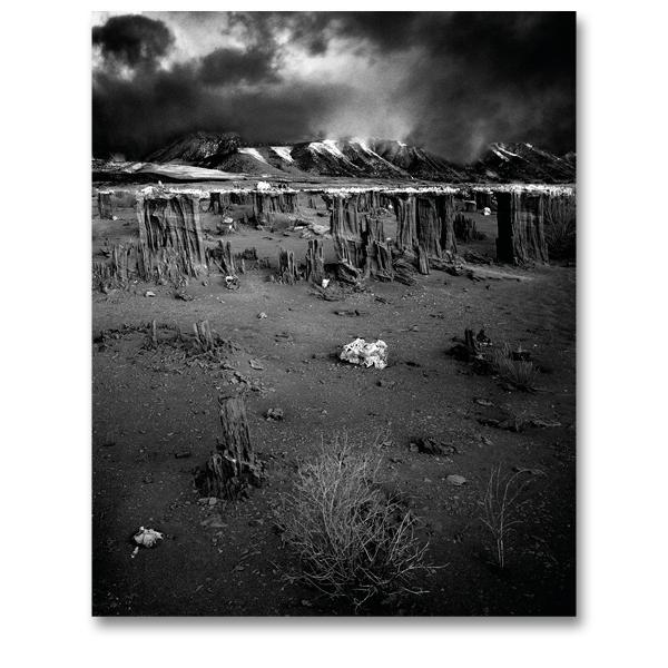 Mono Lake Tufa USA par Yvon HAZE