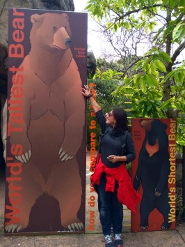 At least I can say that I'm taller than a bear! No need to specify species :)