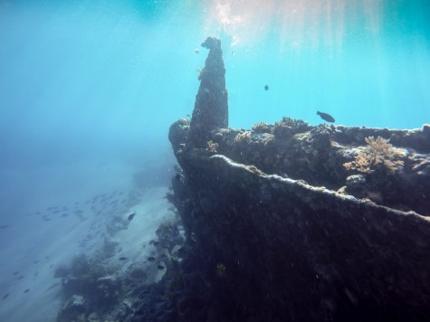 This is what happens to a metal structure after sitting in the ocean for a few decades