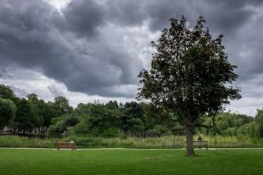 St. James' Park, London, UK (16mm, 1/350s, f9, ISO 200)