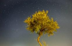 Starry sky, Naxos (16mm, 20s, f1.8, ISO 400)