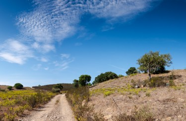 Bee hives near Monte da Vinha, Portugal (2-picture panorama, 16mm, 1/350s, f10, ISO 200)