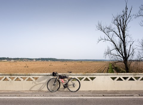 Coruche, Portugal (16mm, f6.4, 1/400s, ISO 200)