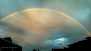 Rainbow over Waverly