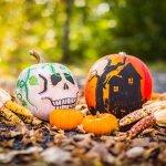 Artistically decorate pumpkins