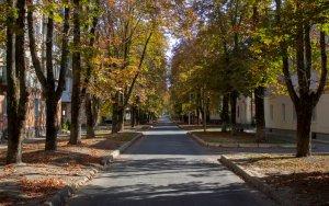 Quiet residential street
