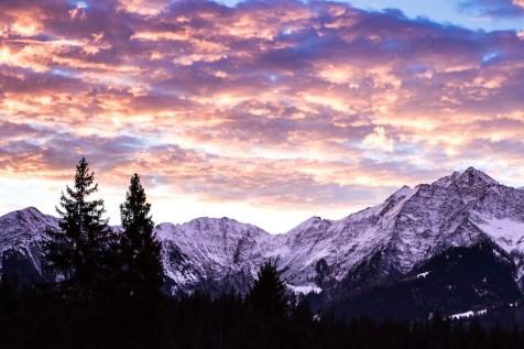 Signina Sunset