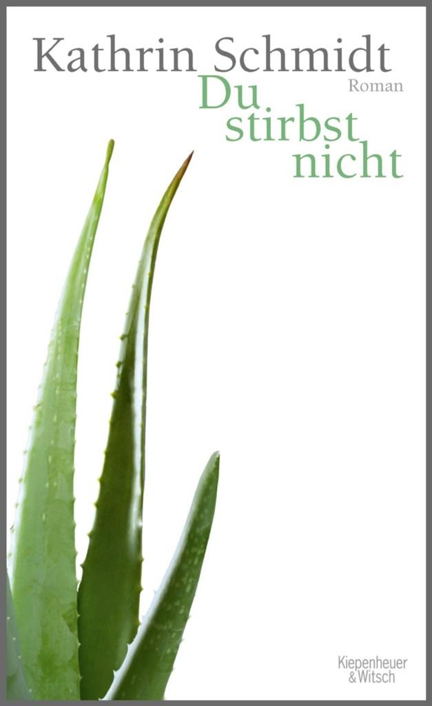 Kathrin Schmidt: Du stirbst nicht