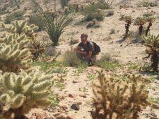 Charley among cacti