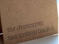 your chromosomes