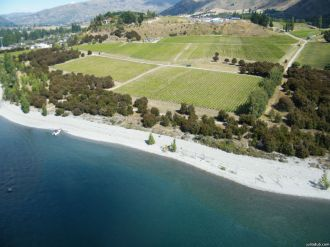 View of Rippon VIneyard from Helicopter!!!