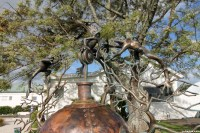 nz-sculpture-onshore-2016-070-campbell-maud-trophy