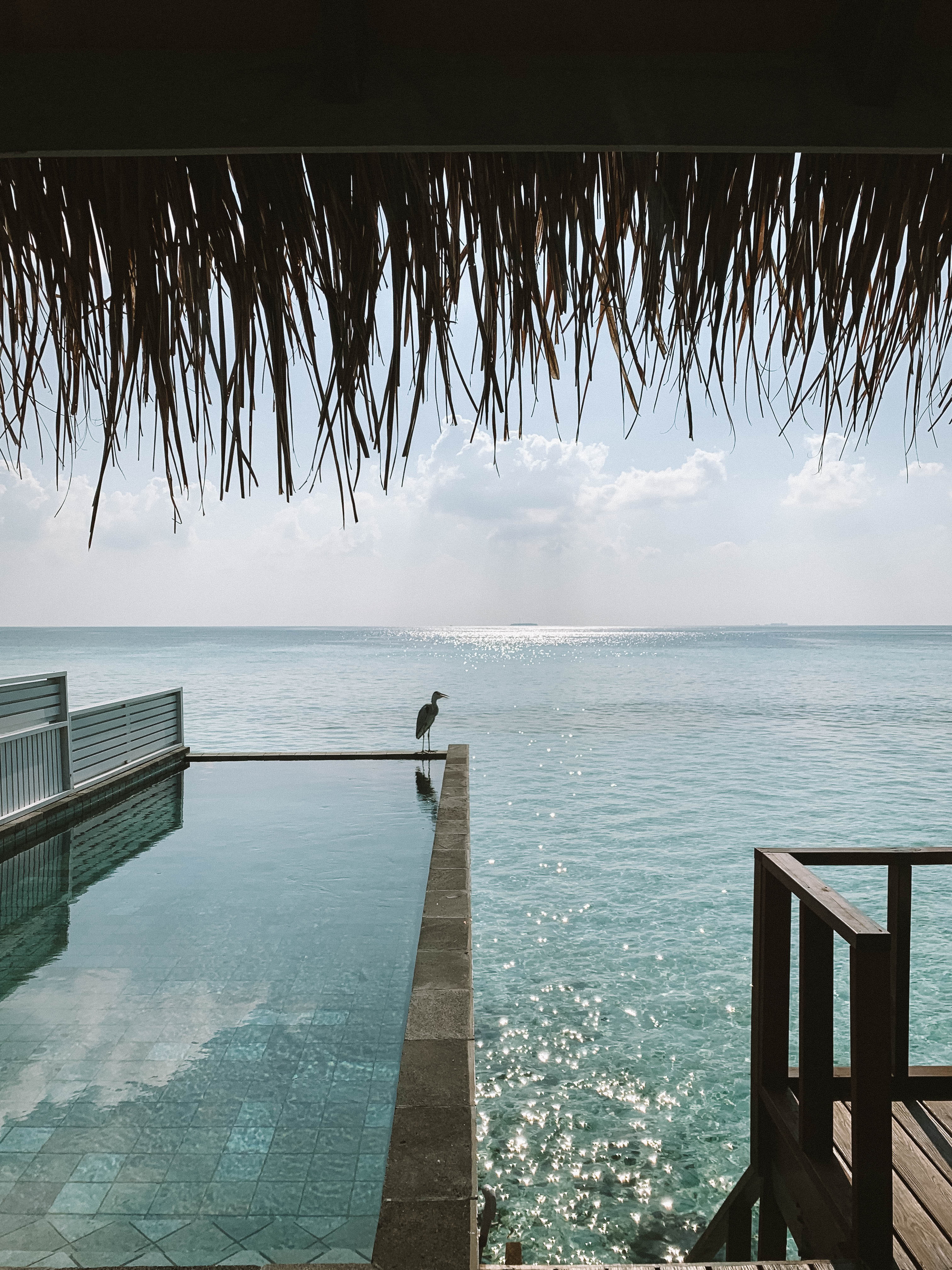 water villas at Ozen by Atmosphere, Maldives