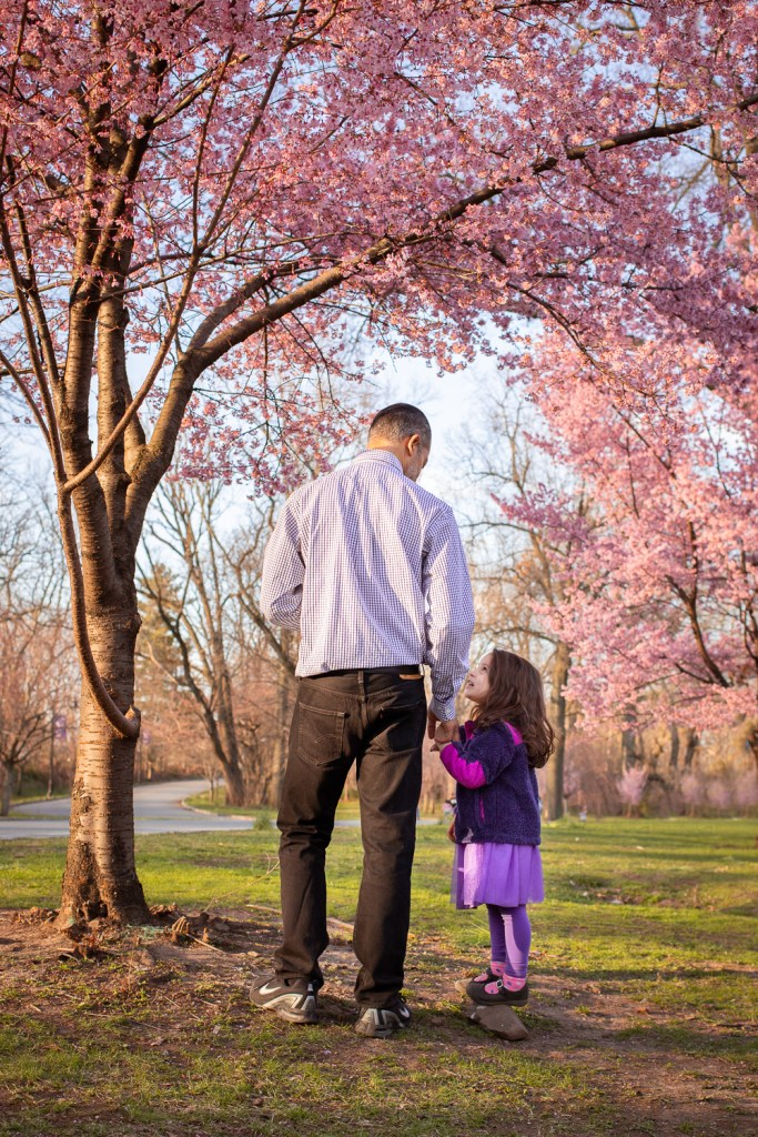 cherry blossom family photo - father daughter moment under cherry blossoms