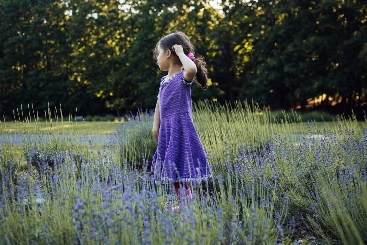lavender field photo session