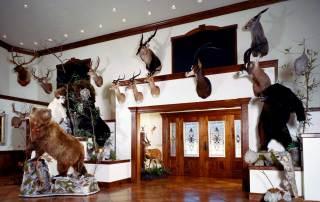 Pennsylvania trophy room