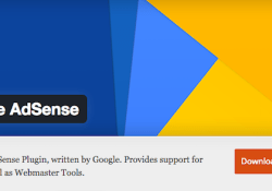 Google Adsense Plugin