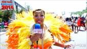 2014 Hollywood Carnival (Julianspromos) (07)