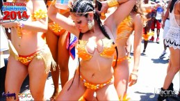 2014 Hollywood Carnival (Julianspromos) (14)