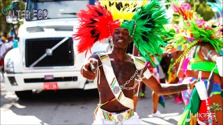 2014 Miami Carnival (11)
