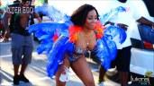 2014 Miami Carnival (29)