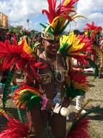 2014 Miami Carnival (44)