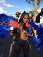 2014 Miami Carnival (45)