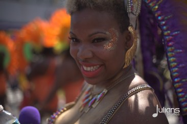 2014 West Indian Day Carnival (Julianspromos) (10)