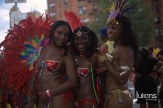 2014 West Indian Day Carnival (Julianspromos) (20)
