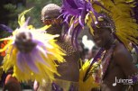 2014 West Indian Day Carnival (Julianspromos) (28)