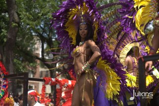 2014 West Indian Day Carnival (Julianspromos) (45)