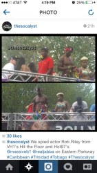 2014 West Indian Day Carnival Shots (Julianspromos) (16)
