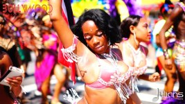 2014 West Indian Day Carnival Shots (Julianspromos) (22)