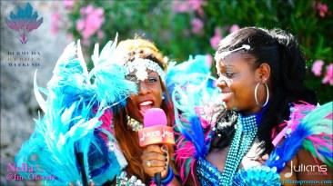 2015 Bermuda Carnival (09)
