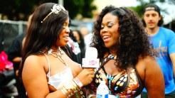 2015 Hollywood Carnival (Julianspromos) (13)