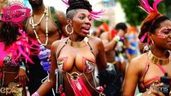 2015 Hollywood Carnival (Julianspromos) (14)