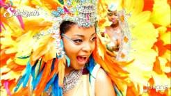 2015 Toronto Carnival (Caribana) (01)
