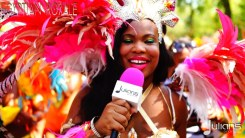 2015 West Indian Day Carnival (Julianspromos) (19)