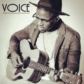 Voice 2017