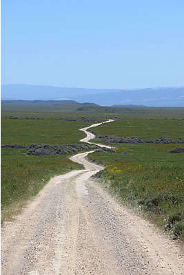 Elkhord Road, Carrizo Plain