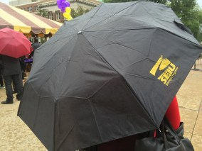 SEIU umbrella