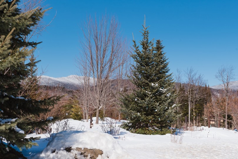 Winter_Whiteface_Wedding_LM_0711