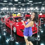 Tiriac Collection Gallery The Ţiriac Collection is a Gallery Any Automobile Enthusiast Must See