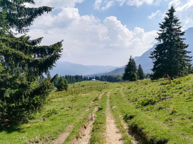 Bucegi mountains hike