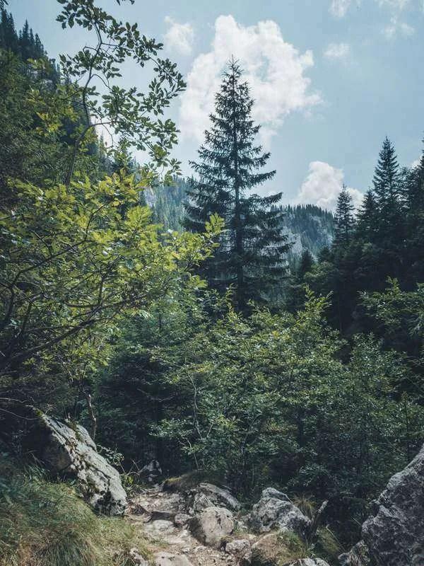 Easy hiking near Bucharest: Scropoasa Lake Romania bucegi mountains hike