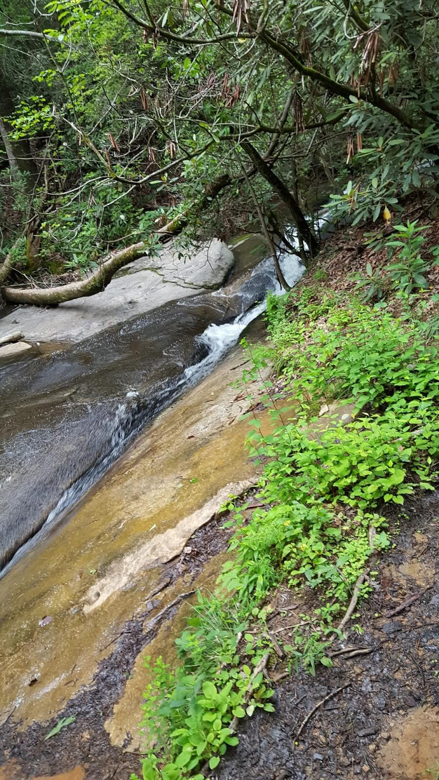 View of water flowing over rocks