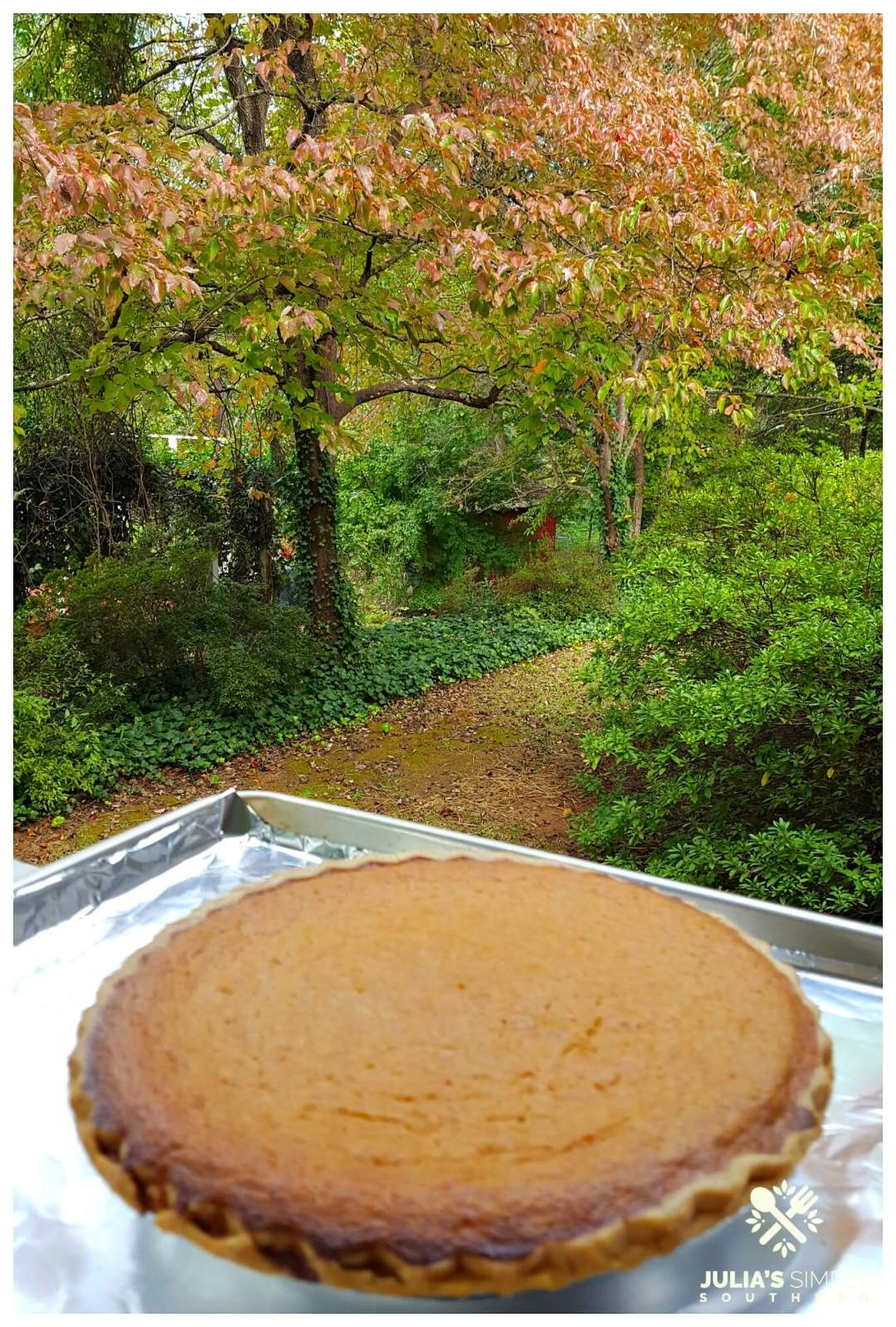 Homemade sweet potato pie cooling on a Southern porch during fall